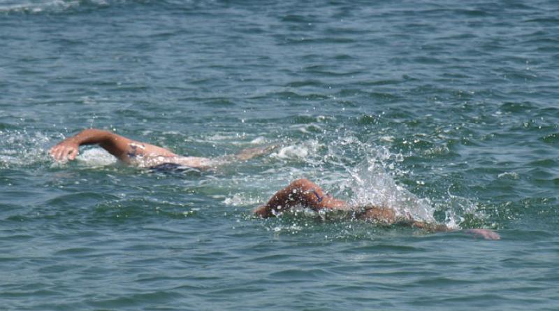 U subotu Međunarodni plivački maraton na Savi